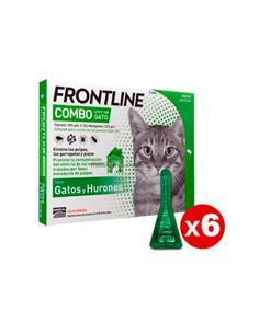 Frontline Combo antiparasitario gatos 6 pip.