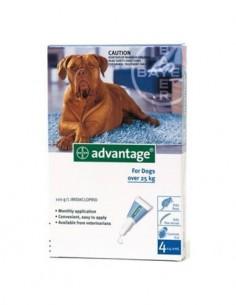 Advantage pipetas perros +25kg. 4 ud.