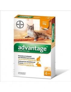 Advantage pipetas gatos de 0 a 4 kg. 4 ud.