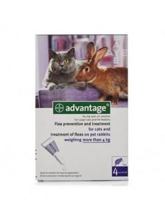 Advantage pipetas gatos de más de 4 kg. 4 ud.