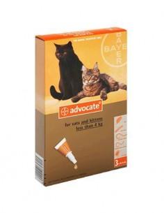Advocate pipetas gatos 1-4 kg.