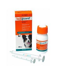 Leisguard reducción infección activa de leishmaniosis 60 ml. 2 ud.