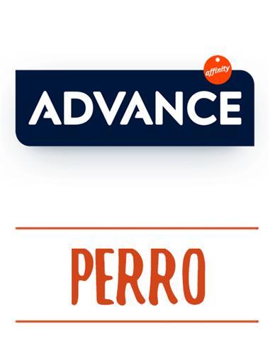 ADVANCE PERRO